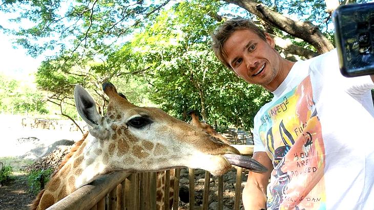 Жираф делает селфи с русским футболистом