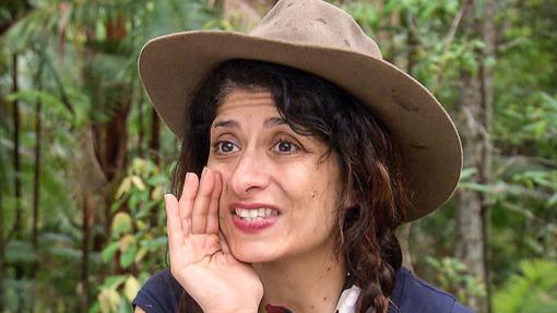 Шаппи Корсанди, журналист