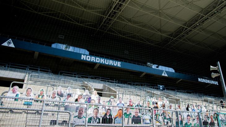 Футбольным клубам Германии разрешили пускать зрителей на стадионы
