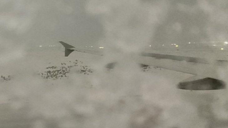 «Реал» не смог вылететь на матч с «Осасуной» из-за снегопада